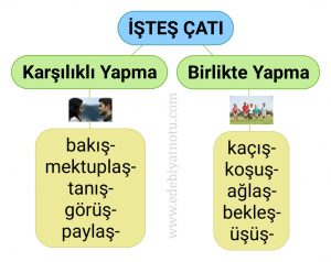 istes-catili-fiiller