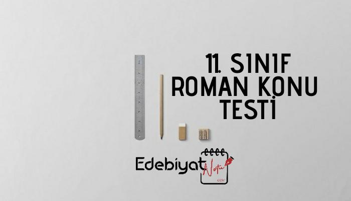 11. Sınıf Roman Testi Online