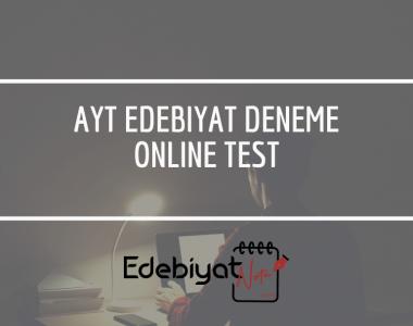 edebiyat-deneme-online