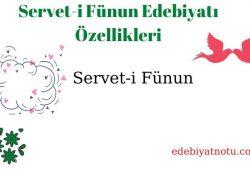 Servet-i Fünun Edebiyatı Özellikleri