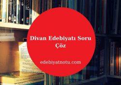Divan Edebiyatı Soru Çöz
