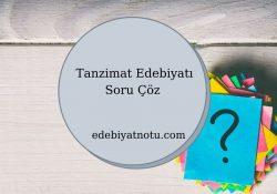 Tanzimat Edebiyatı Soru Çöz